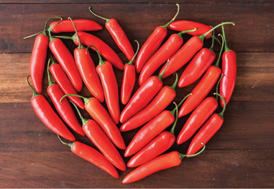 Friends of the Library Chilis Fundraiser - image of red chili peppers arranged in a heart